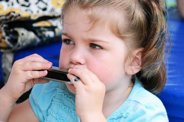 Детски музикални инструменти -хармоника от New Classic Toys